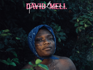 David Meli Fruition  download
