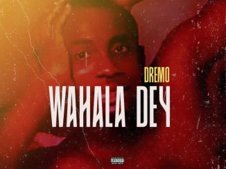 Free Beat: Dremo  Wahala Dey (Instrumental) mp3 download