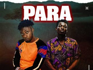 Gozie Arthur Ft. Terry Apala - Para Mp3 Audio Download