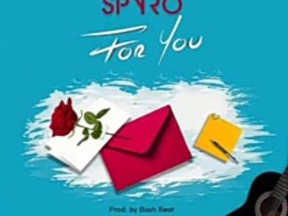 Spyro For You mp3 download