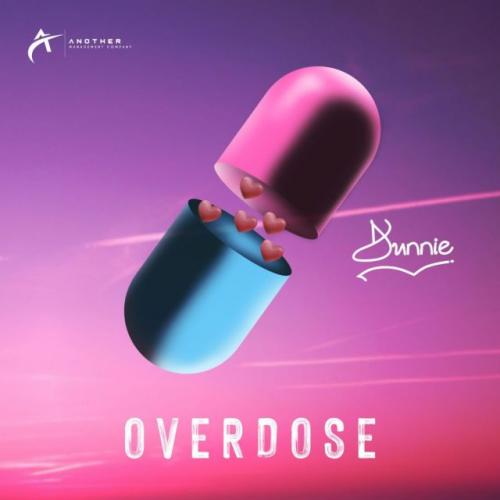 Dunnie  Overdose mp3 download