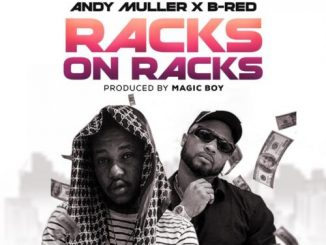 Andy Muller Ft. B-Red Racks On Racks mp3 download