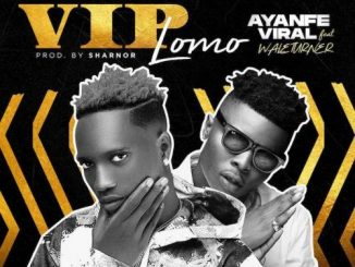 Ayanfe Viral Ft. Wale Turner  VIP Lomo mp3 download