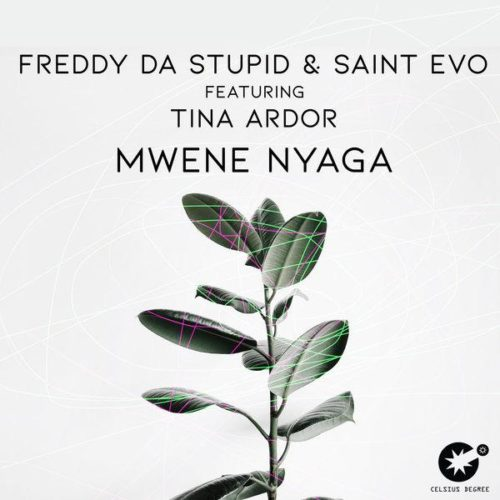 Freddy Da Stupid Ft. Saint Evo & Tina Ardor  Mwene Nyaga (Original Mix) mp3 download