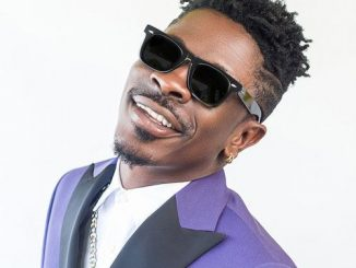 Shatta Wale  Kill And Gone mp3 download