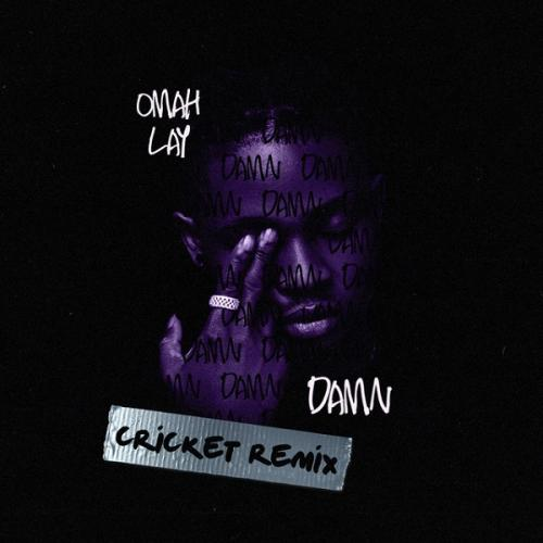 Omah Lay Damn (Cricket Remix) mp3 download