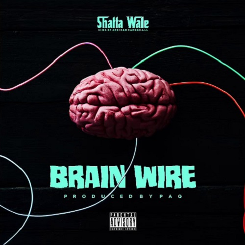 Shatta Wale Brain Wire (Freestyle) mp3 download