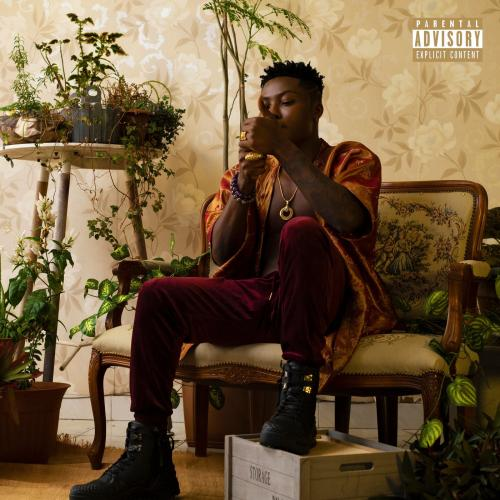 Reekado Banks  Happy Yourself Ft. Wizkid mp3 download