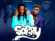 Addi Self  Sorry Ft. Natty Lee mp3 download