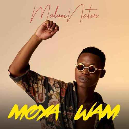 MalumNator Aw'Yebo Ft. De Mthuda, Ntokzin & MFR Souls mp3 download