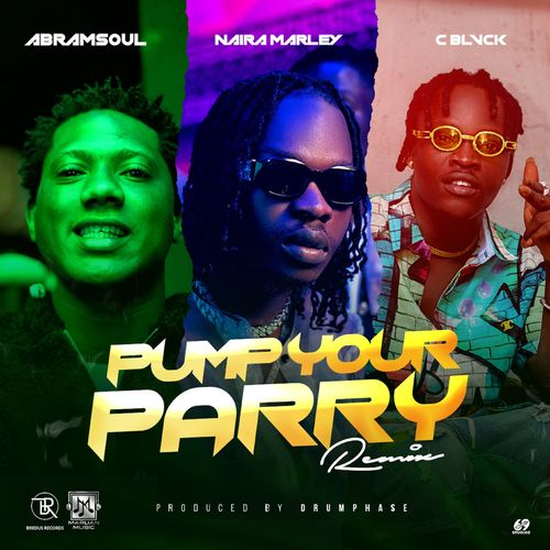 Abramsoul Ft. Naira Marley, C Blvck Pump Your Parry (Remix) mp3 download