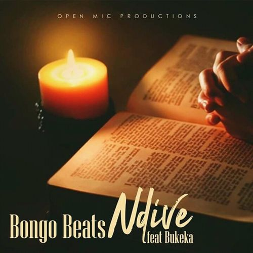 Bongo Beats Ndive Ft. Bukeka mp3 download